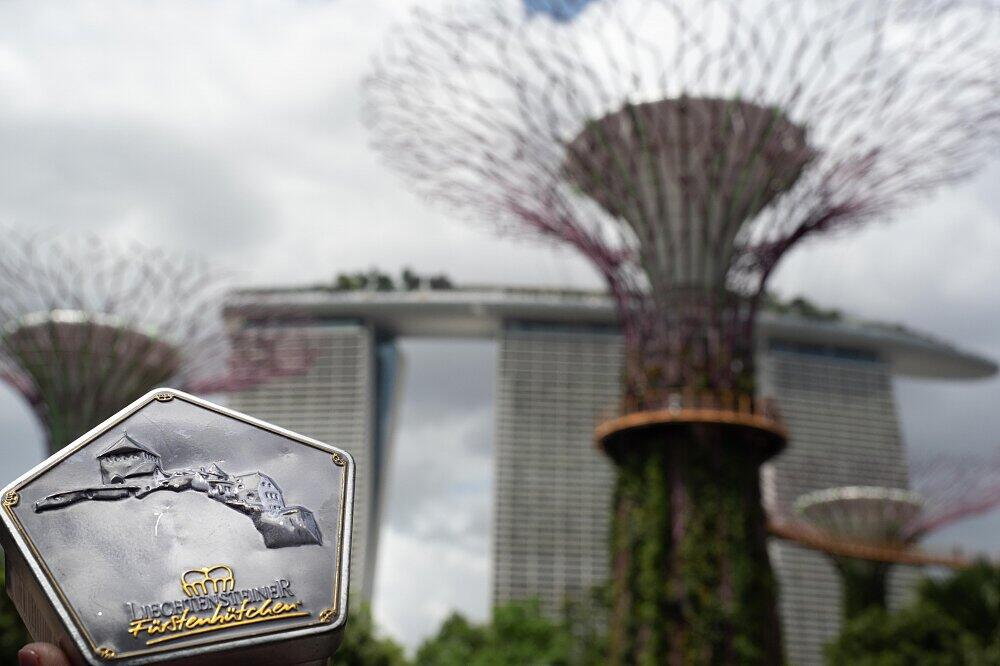 Singapur Gardens by the Bay